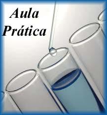 POP-02- Aula Prática- Análises Clínica II- Identificação De Bacilos Gram Negativos
