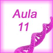 Aula 11- Bioquímica Geral e Bucal- Metabolismo dos Lipídeos II
