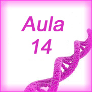 Aula 14- Bioquímica Geral e Bucal- Metabolismo de Aminoácidos e Proteínas