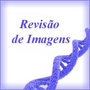 Revisão- Imagens- Helmintos- Parasitologia II