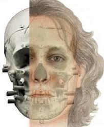 Curso de Anatomia Forense 04/10/2015