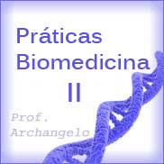 Cronograma Práticas de Biomedicina II