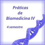 Cronograma Práticas de Biomedicina IV- Noturno- Turma A
